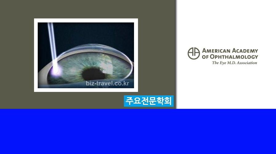 시카고 미국 안과 학회 연례회의AAO 2018Annual Meeting of the American Academy of Ophthalmology
