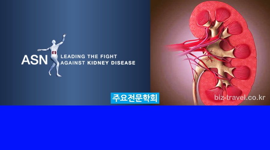 워싱턴 미국 신장 병리 학회 회의 ASN Kidney Week 2019 Kidney Week(The American Society of Nephrology)
